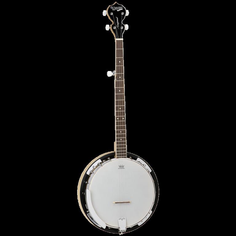 Tanglewood Union series 5 string banjo